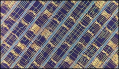 Advanced microprocessor made from carbon nanotubes