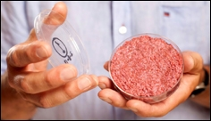 Artificial meat is now made in space