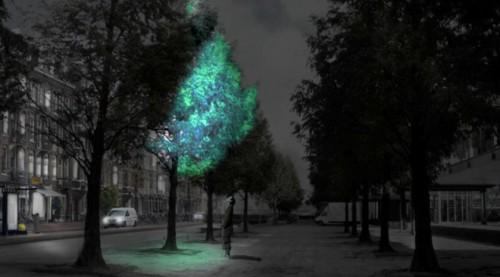 Luminiscenční strom místo lampy. (Studio Roosegarde)